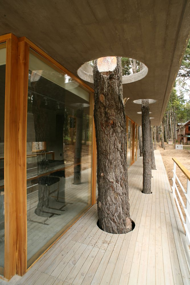 House amongst trees / Martín Fernández de Lema and Nicolás Deutsch