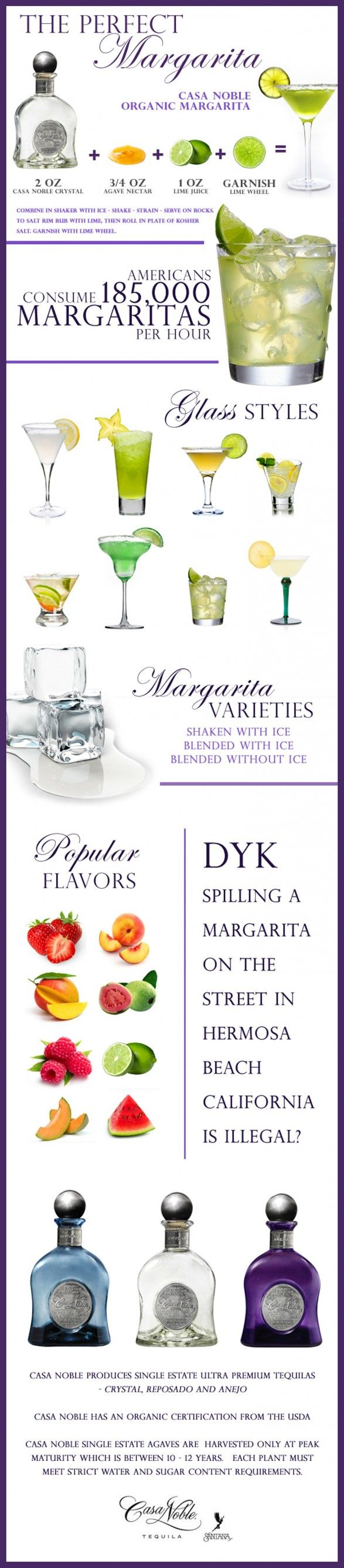 Cocktail Infographic: The Perfect Margarita