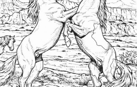 Fighting Wild Horse Animal Coloring Page