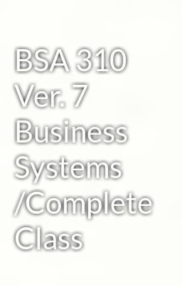 bsa 310 general it system inventory