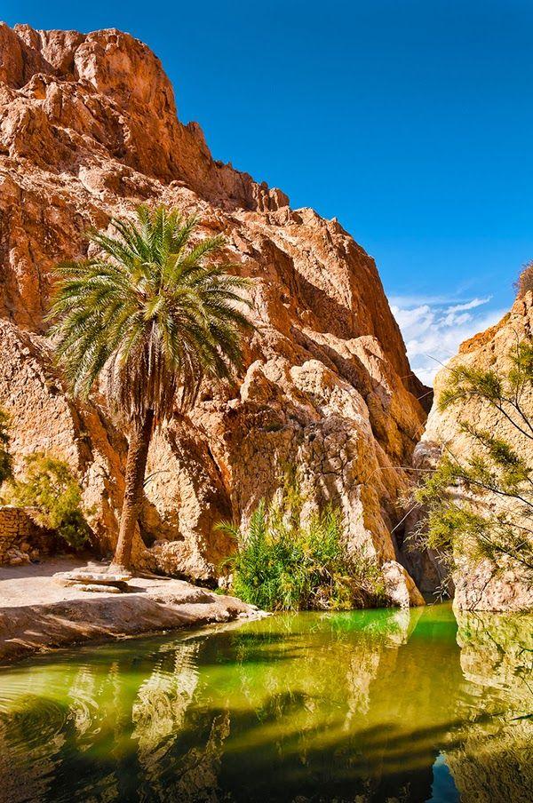 Chebika Oasis, Tunisia