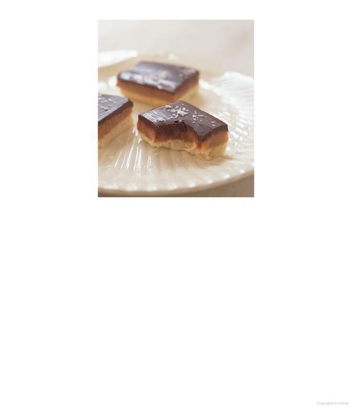 Bill Granger's Chocolate Coconut Slice Recipe — Dishmaps