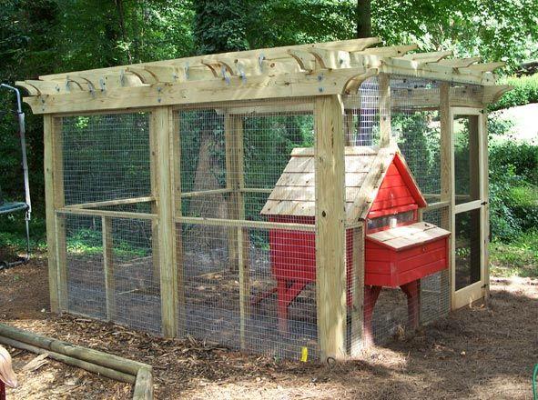 Chicken coop w pergola chickens pinterest for Chicken coop kits for 12 chickens