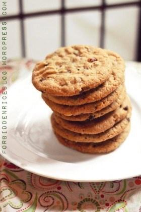 Cookie Butter Chocolate Chip Hazelnut Cookies