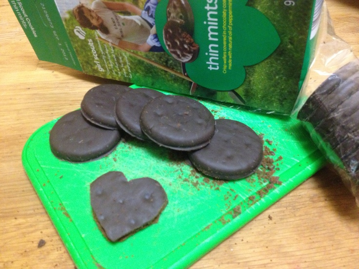 valentine day girl scout swap