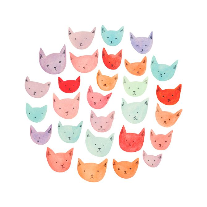 cats by Amy Borrell