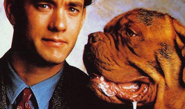 Turner and Hooch | my favorite entertainment | Pinterest