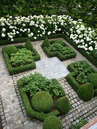 Modern country style hydrangeas topiary and boxwood in for Garden design ideas with hedges