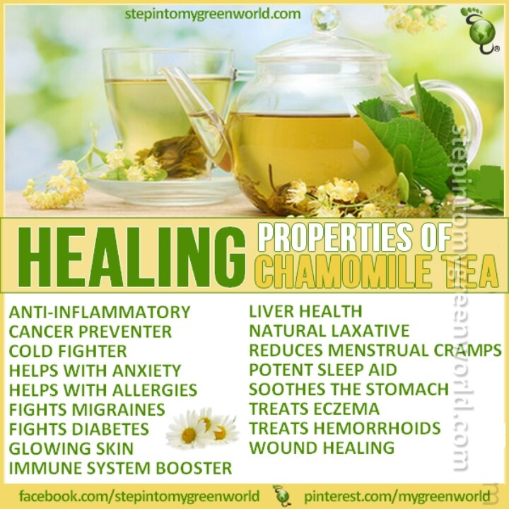 Chamomile Tea Benefits Health Natural Healing And