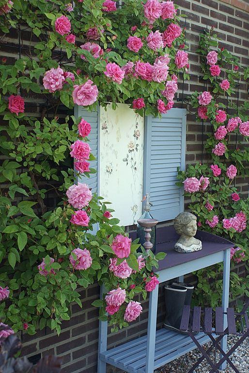 shabby chic garden ideas pinterest. Black Bedroom Furniture Sets. Home Design Ideas