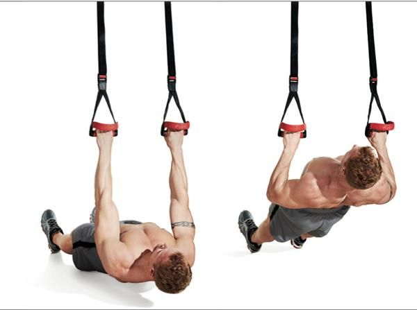 13  Suspended Inverted RowInverted Row Muscles
