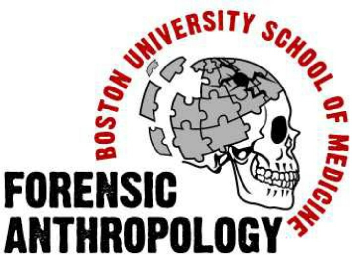 Anthropology york college college now