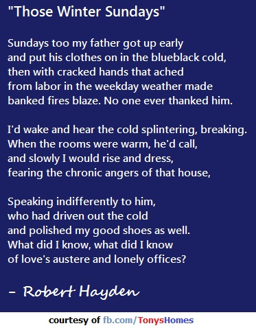 those winter sundays essay example Those winter sundays is a fourteen-line lyric poem in free verse it was first   following are examples of figures of speech in the poem for definitions of  figures.