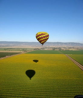 """tripYIP.com - """"Fun Things To Do!"""" loves SAN FRANCISCO, CA:  BALLOONS ABOVE THE VALLEY  You'll float above the vineyards, exploring Napa Valley with incredible views."""