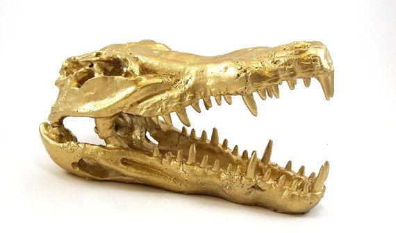 faux crocodile skull resin statue crocodile head faux taxidermied. Black Bedroom Furniture Sets. Home Design Ideas
