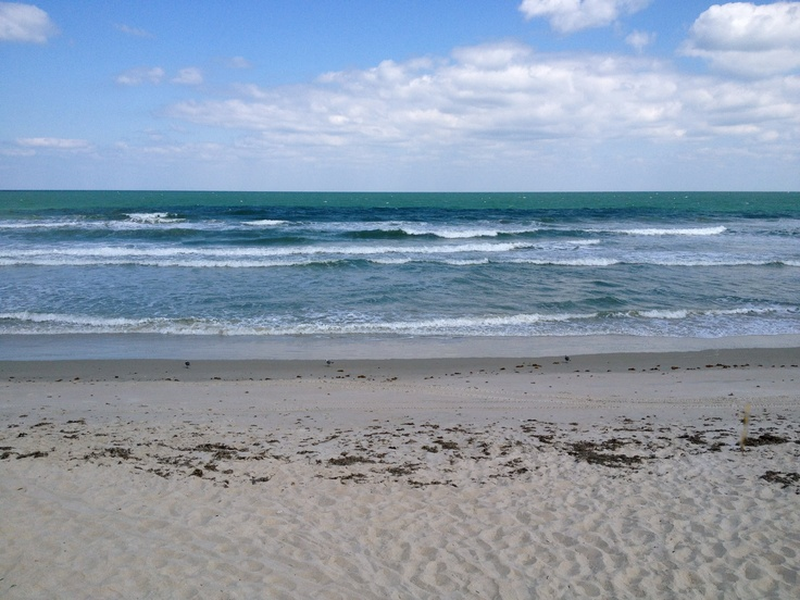 Playalinda Beach Florida Photos I Have Taken In My Travels Pinterest