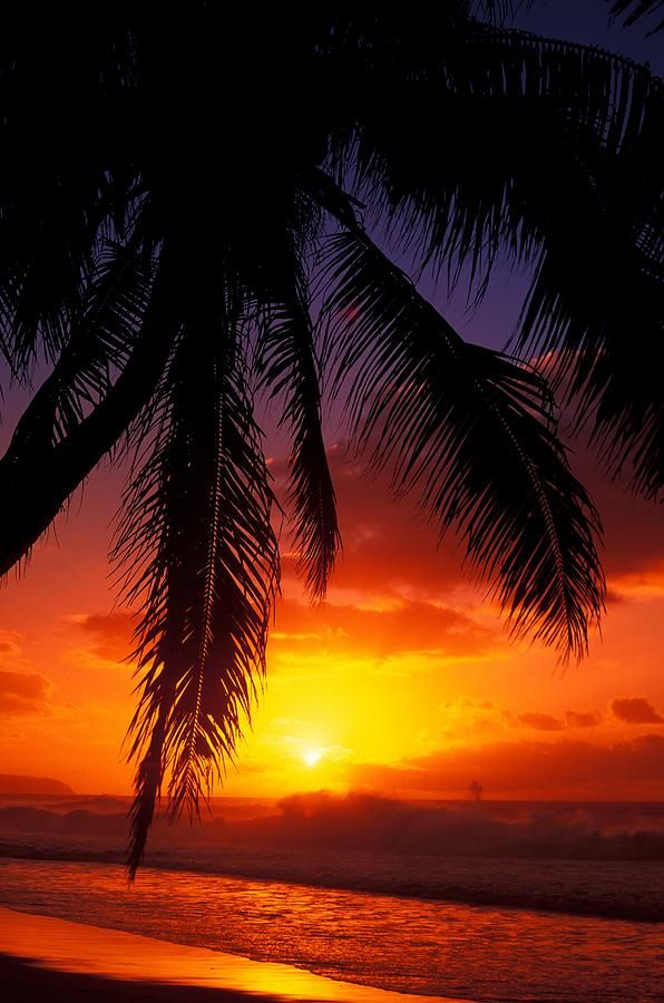 ✮ Hawaii, View of sunset from the beach