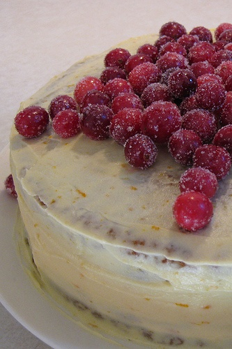 spice cranberry cake with orange frosting and candied cranberries ...