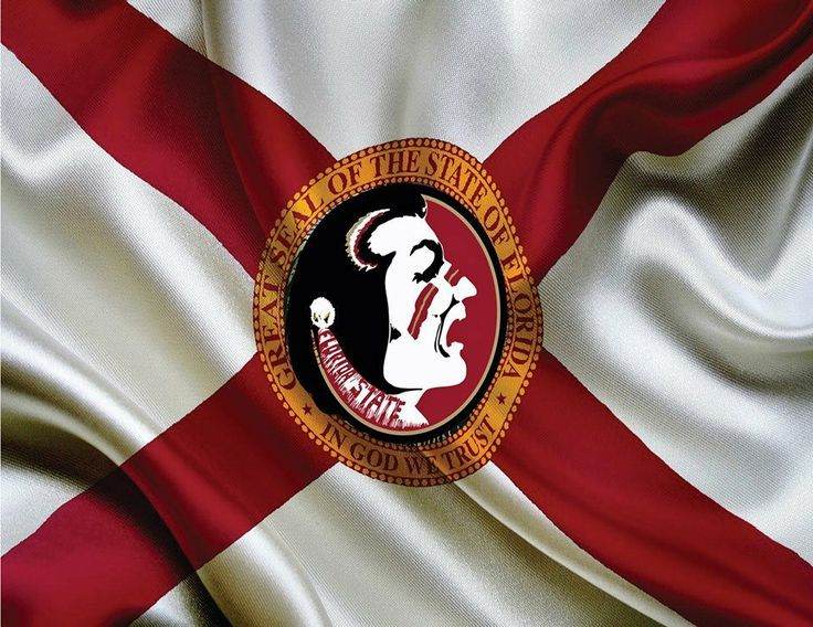picture of florida state flag