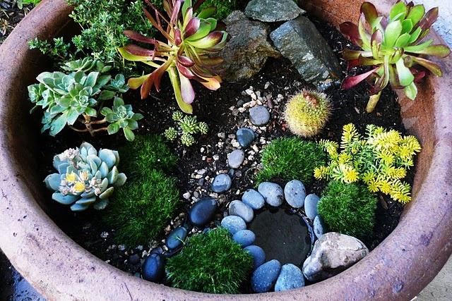Galería de jardines de hadas 26a94675a81c93a8016efd33f783f862