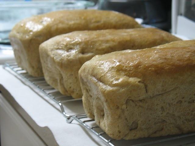 Honey Wheat Bread | Favorite Recipes | Pinterest