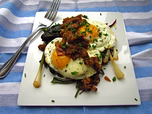 stir fried eggs and tomatoes fried egg with ramps mushrooms and bacon ...