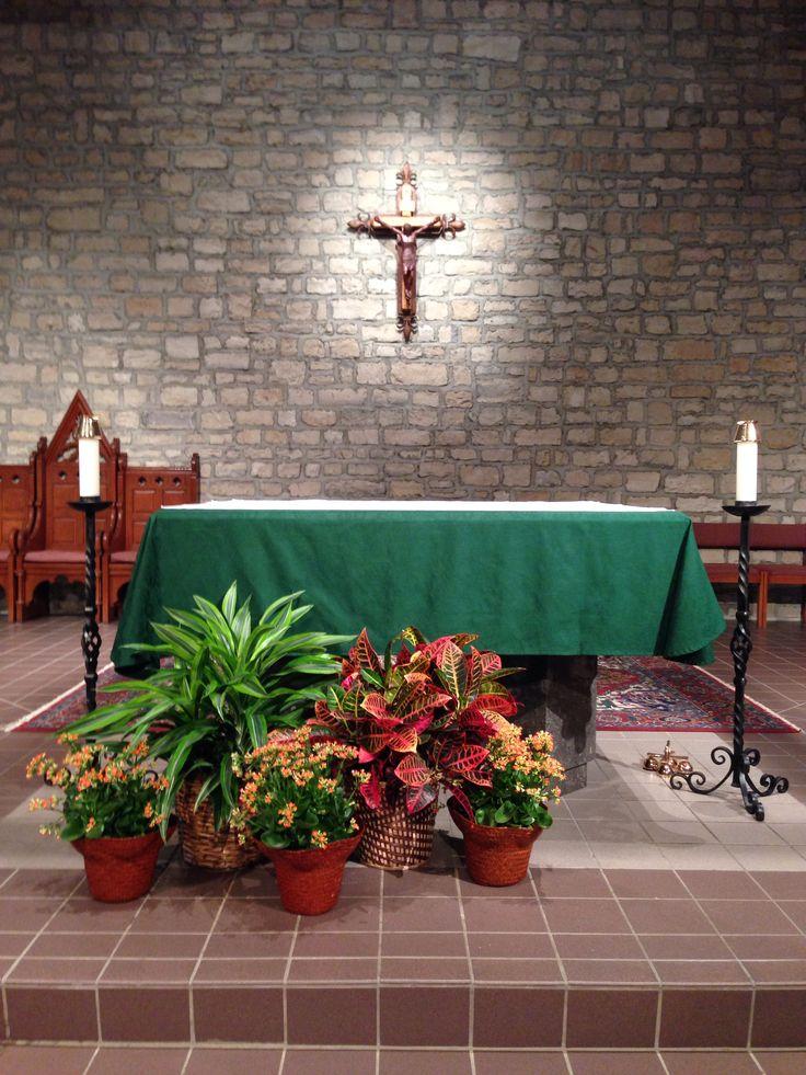 catholic liturgy pentecost sunday