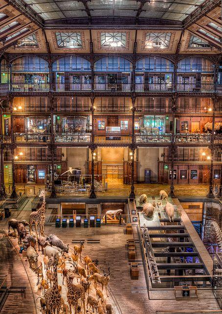 The Natural History Museum Paris