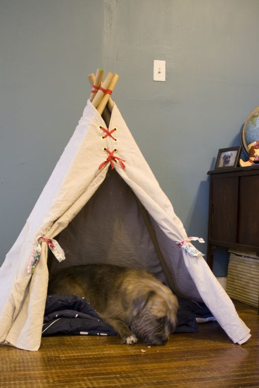make our dog a teepee puppy pinterest