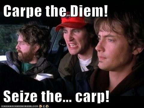 Seize the Carp picture from the movie