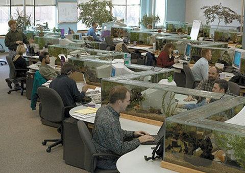 Office fish tank desk my style pinterest for Fish tank desk