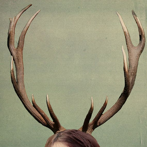 Surreal antler photograph holiday deer antlers teal for Antlers decoration