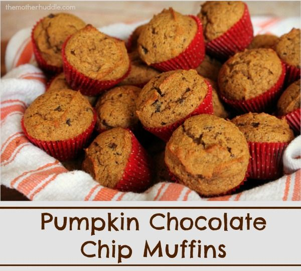 Pumpkin Chocolate Chip Muffins - perfect for freezing and popping in ...