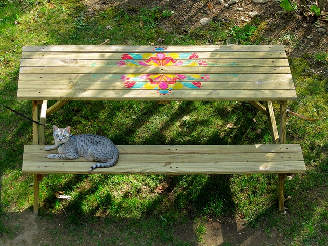 Pin By Jeanette Puccio On Picnic Table Paint Ideas Pinterest