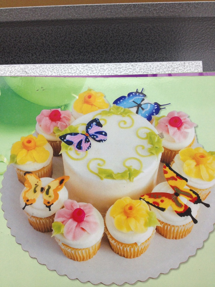 sams club butterfly cake with cupcakes celebrate pinterest