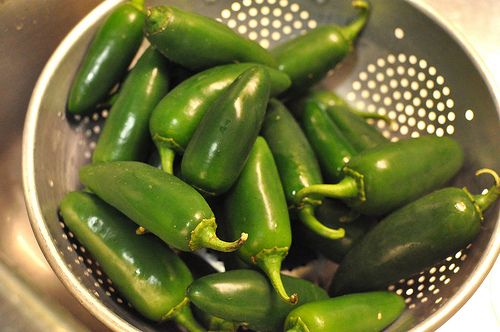 happening now...unfancy pickled jalapeno peppers #recipe #canning