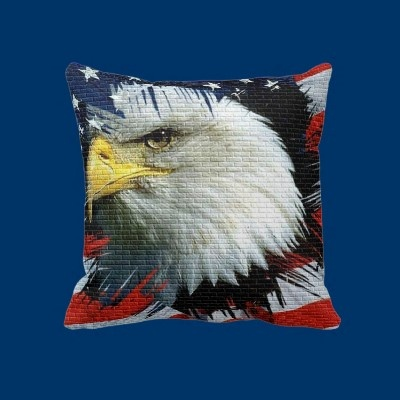 eagle and flag images