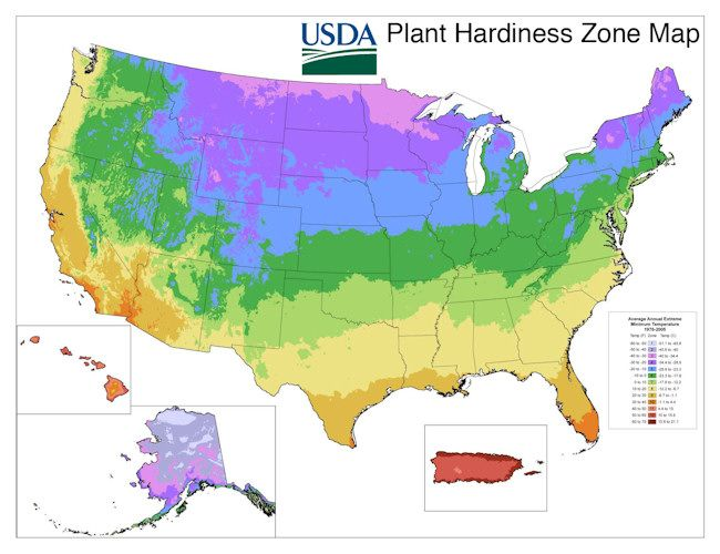 Usda Plant Hardiness Zone Map High Country Gardening