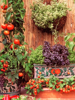 day 12: a vegetable garden | A Pin A Day in May | Pinterest