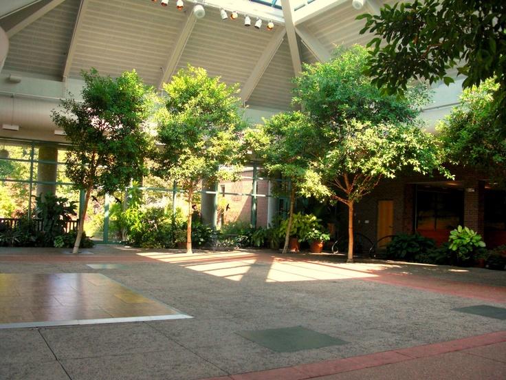 Another indoor garden venue ideas pinterest for Indoor botanical gardens