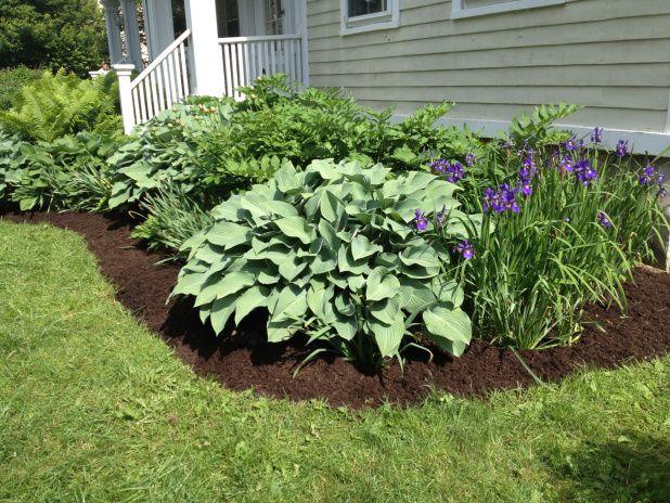 Foundation planting gardening pinterest for Foundation planting plans