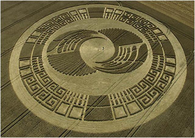 Crop circle  ----------------------------  Intricate!!!