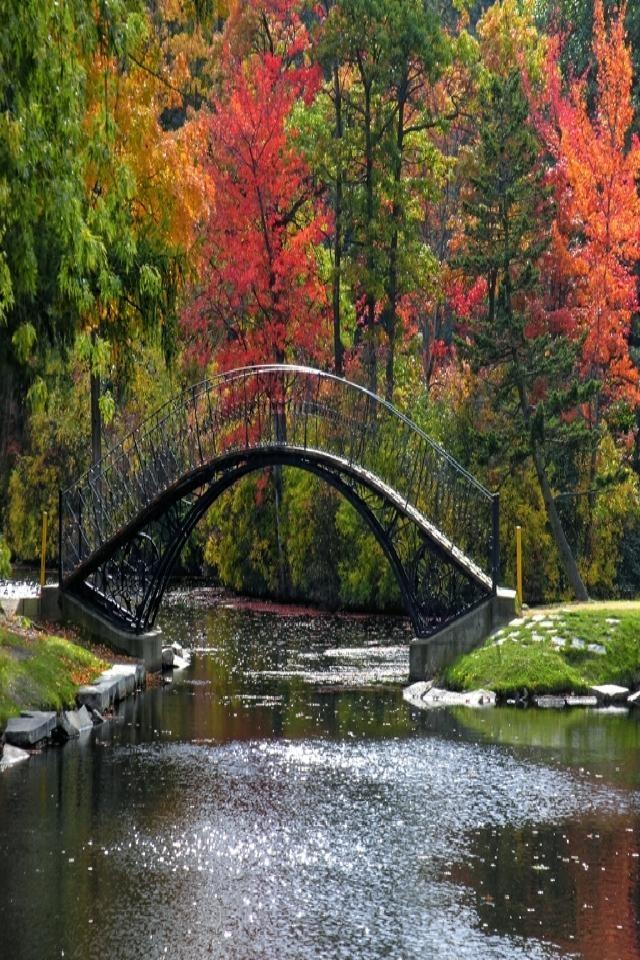 unique bridge