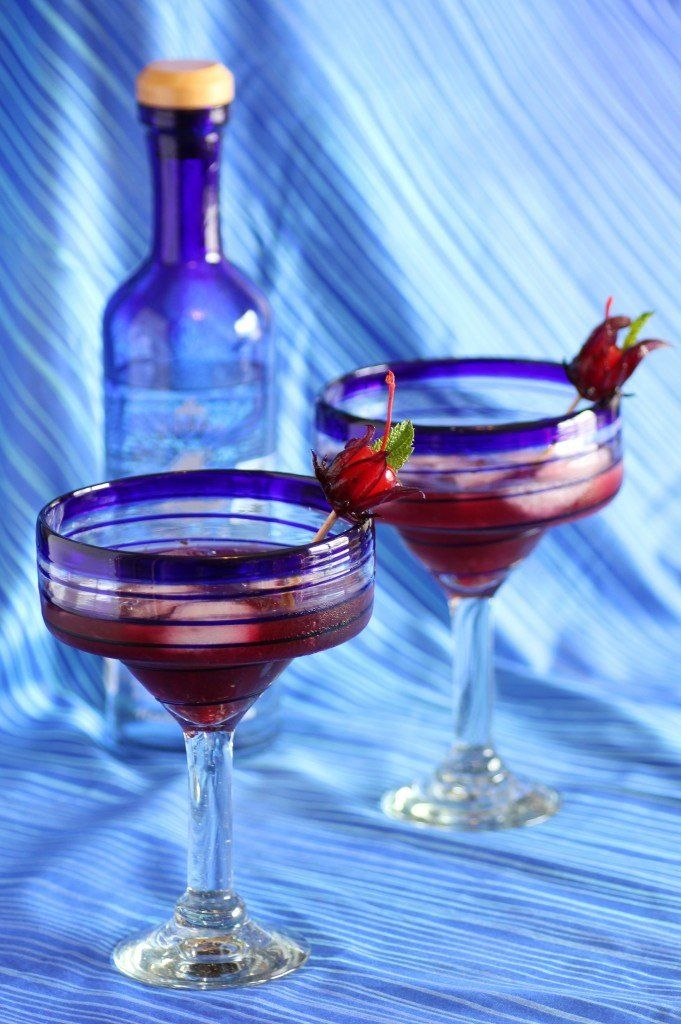 Wild Hibiscus Margarita | delicious food and drink | Pinterest