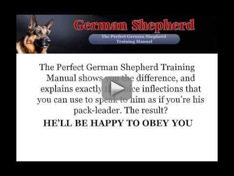 german shepherd dog training manual pdf