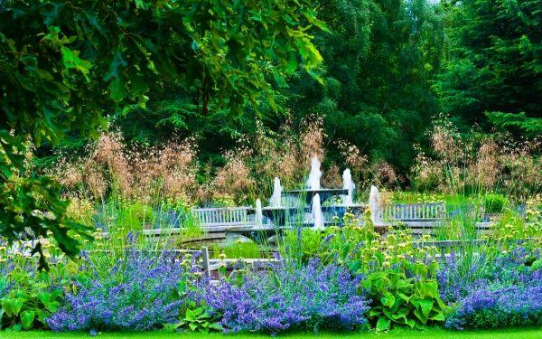 Cambridge University Botanic Gardens 7 Botanical Garden