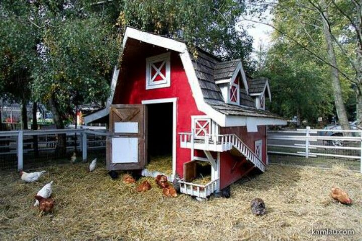 Chicken coop farm the image kid has it for Old farm chicken coops