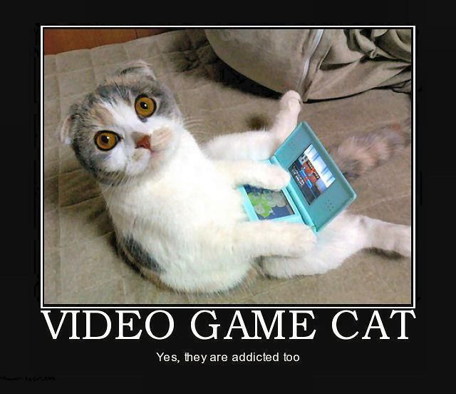 Video Game CatVideo Game Love Quotes