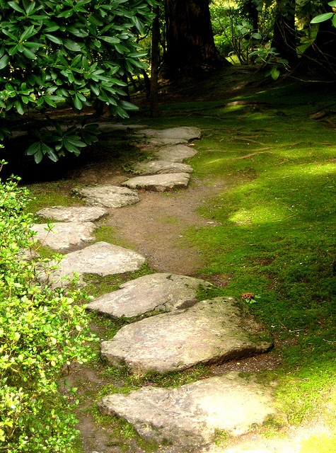 Stepping Stones Portland OR Garden Paths Pebbles Pinterest