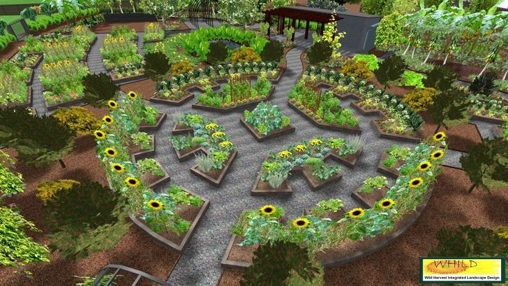 sample of a fully permaculture design with exact placement of
